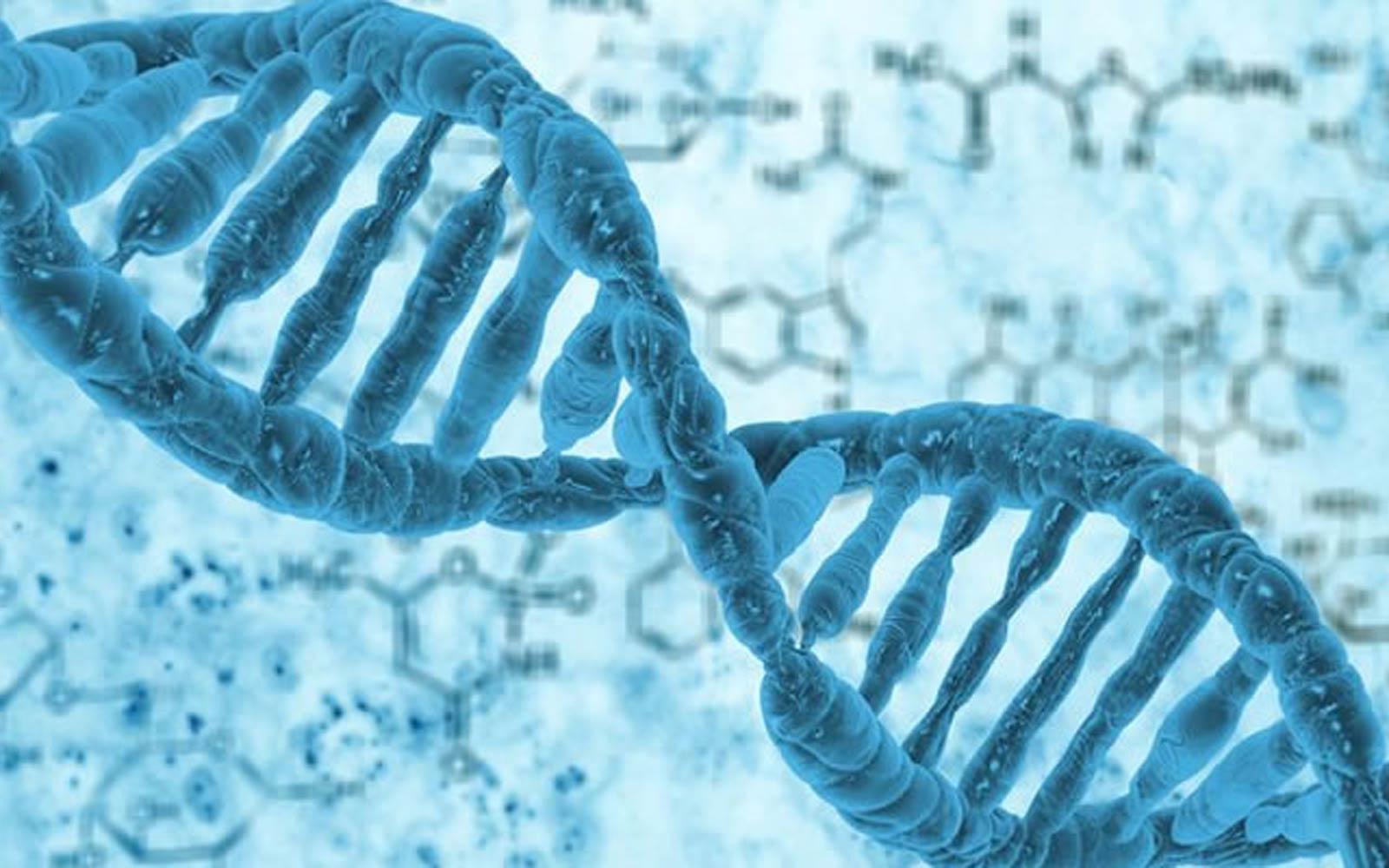 Mariane Fontes MD | Genética e Câncer