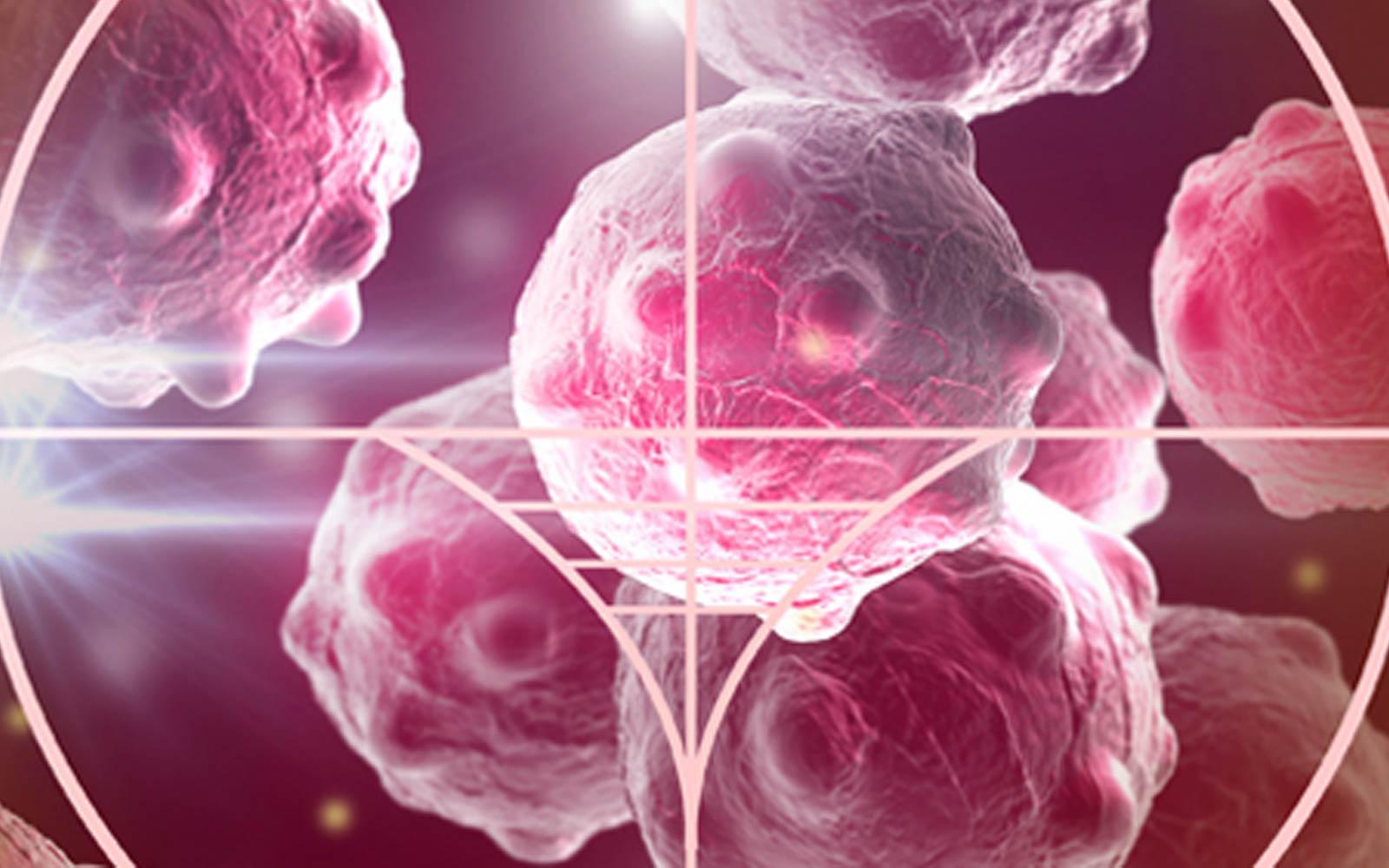 Mariane Fontes MD | Drogas de Alvo Molecular